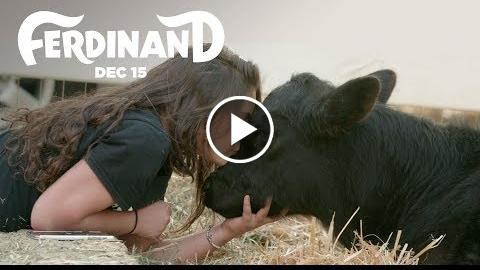 Ferdinand  The Gentle Barn Rescues A Bull  20th Century FOX