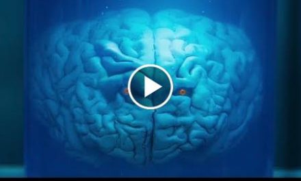 Brains With Eyes! – The Return Of Doctor Mysterio – Doctor Who – BBC