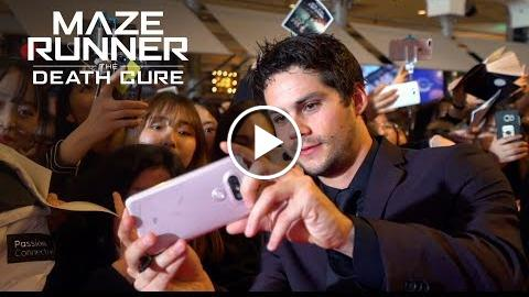 Maze Runner: The Death Cure  Fans Around the World React  20th Century FOX