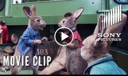 PETER RABBIT Clip – Wet Willy