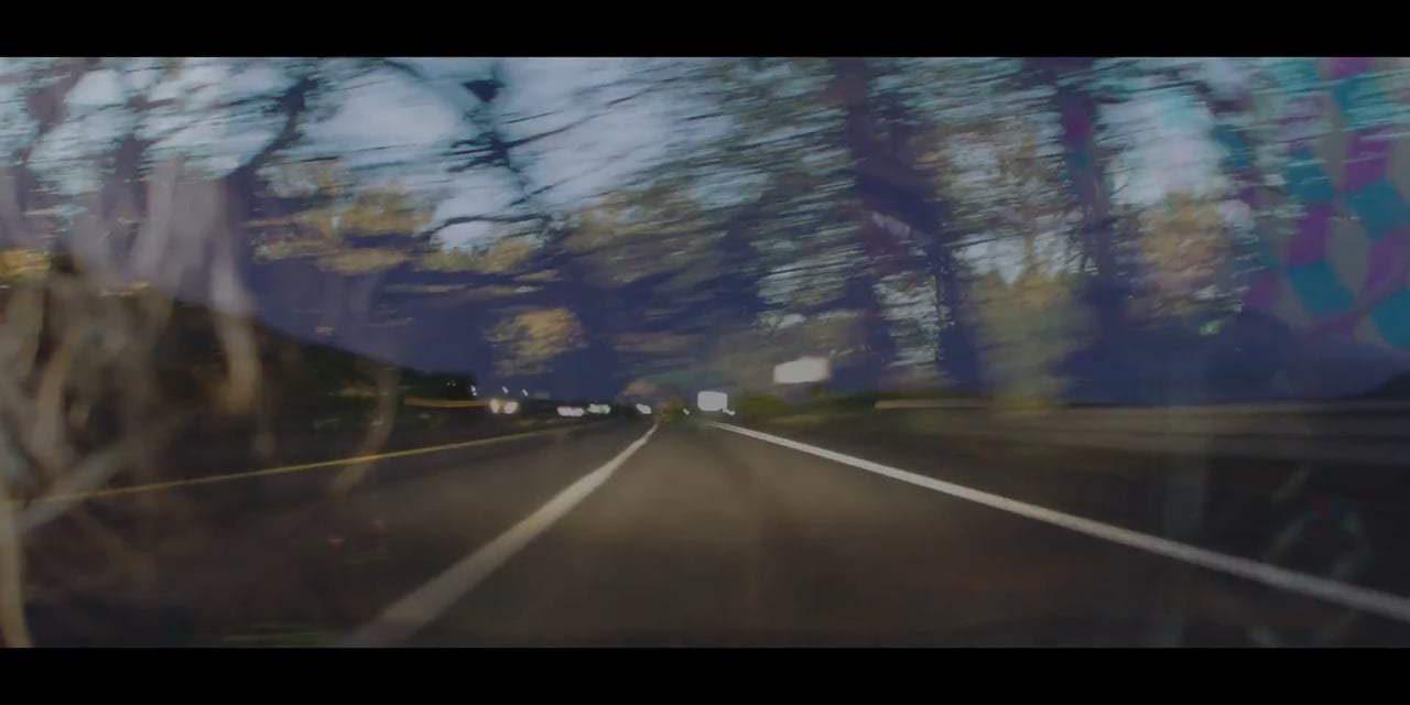 Zen Dog: Trailer