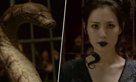 Fantastic Beasts Trailer Confirms Popular Harry Potter Nagini Fan Theory