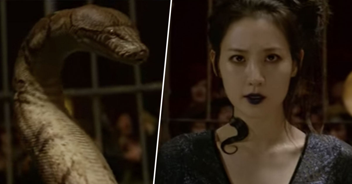 Fantastic Beasts Trailer Confirms Popular Harry Potter Nagini Fan Theory