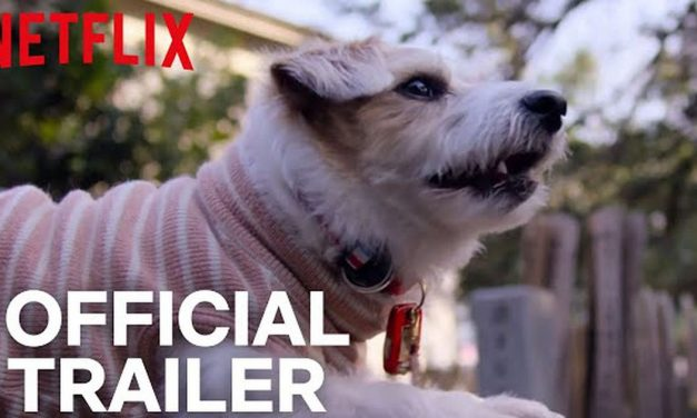 The trailer for Netflix's docuseries 'Dogs' will make you tear up, duh