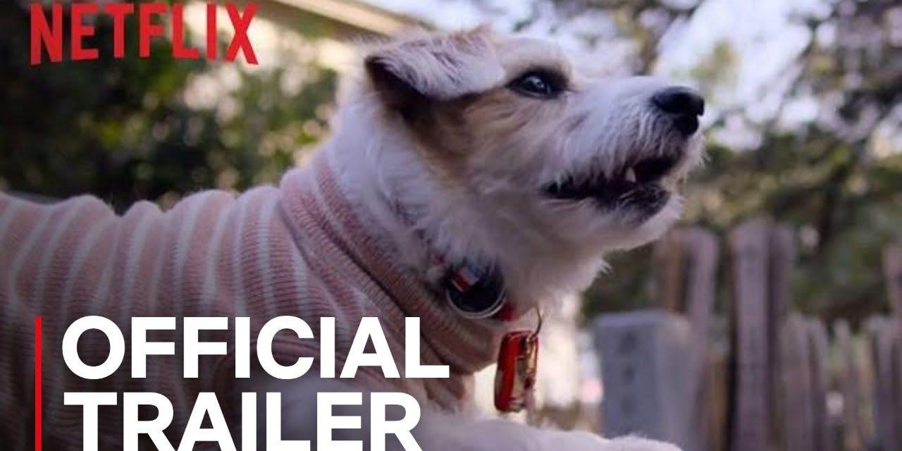 Dogs | Official Trailer [HD] | Netflix