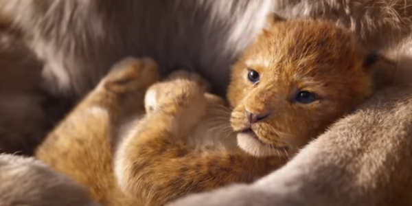 The Lion King Teaser Was Disney's Most-Viewed Debut Trailer Ever