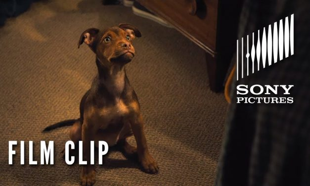 "A DOG'S WAY HOME Clip – ""It was Love"" (In Theaters Tomorrow)"