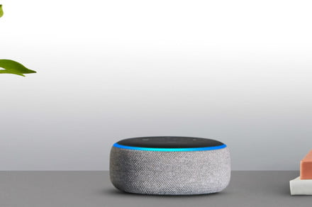A.I.'s humorous side: Here are the funniest things to ask Alexa