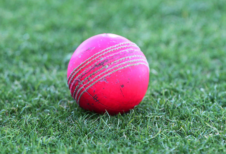 The growth in cricket podcasts