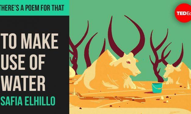 """To Make Use of Water"" by Safia Elhillo"