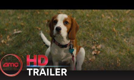 A DOG'S JOURNEY – Official Trailer (Dennis Quaid, Josh Gad) | AMC Theatres (2019)