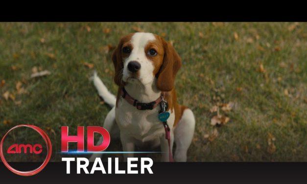 A DOG'S JOURNEY – Official Trailer (Dennis Quaid, Josh Gad)   AMC Theatres (2019)