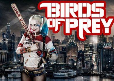 Birds-of-Prey-Logo-Harley-Gotham