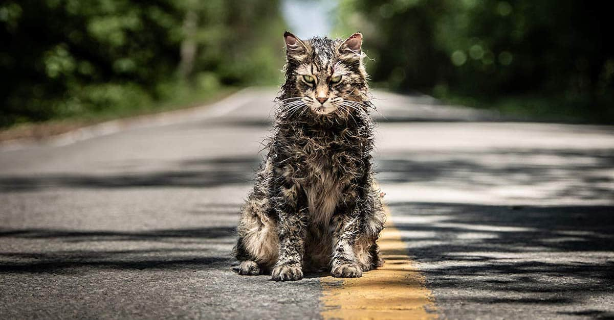 PET SEMATARY Producer Says Prequel More Likely Than Sequel