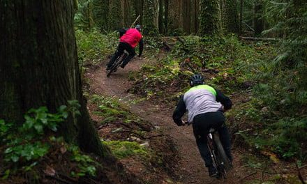 The best mountain bikes for 2019