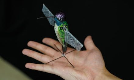 Tiny drone uses A.I. to learn from nature's best pilot, the hummingbird