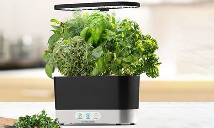 Amazon slices prices on select AeroGarden smart indoor gardens by up to 50%