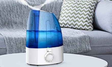 The best humidifiers for 2019
