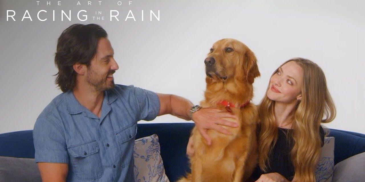 The Art of Racing in the Rain | Meet Parker AKA Enzo | 20th Century FOX