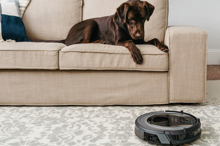Best Labor Day sales on Roomba, Deebot, Eufy, Roborock, and Shark robot vacuums