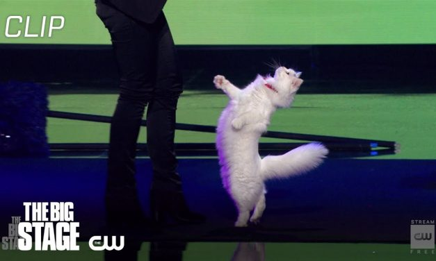 The Big Stage | Savitsky Cat Acrobatics | The CW