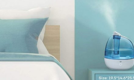 Sinus problems? The best humidifiers can help you breathe easier