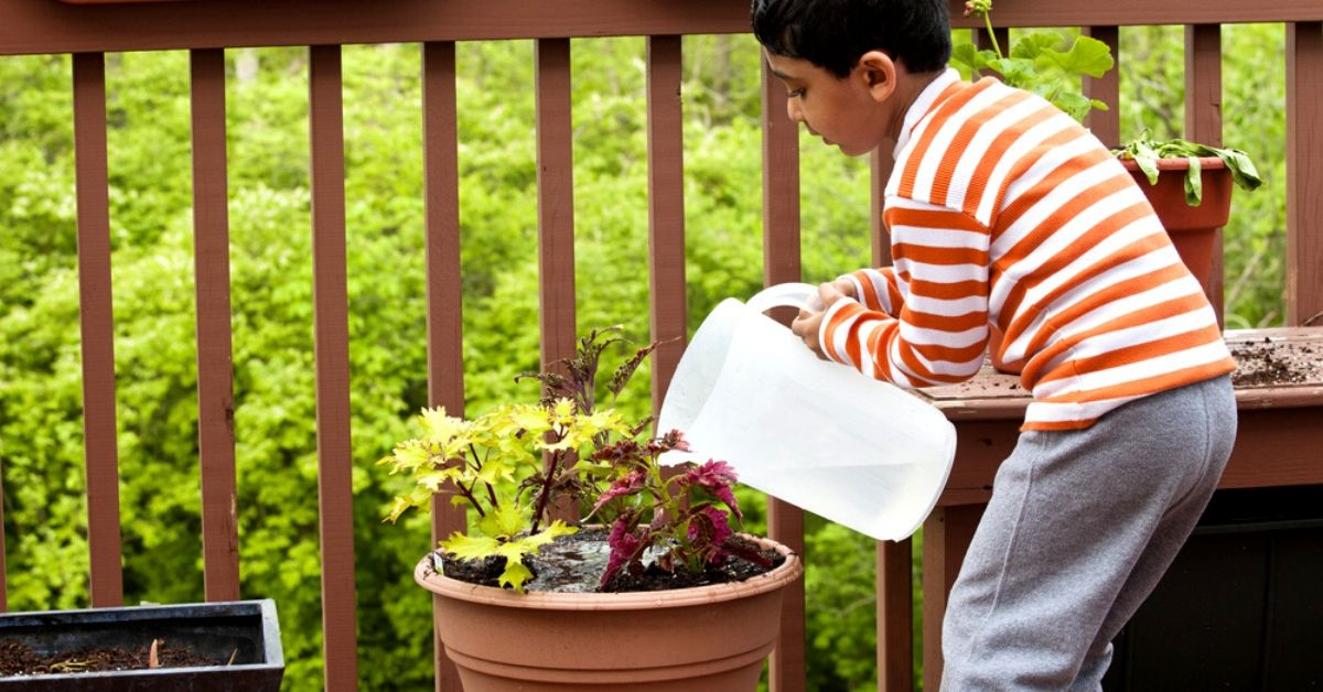8 Perfect Gifts Under Rs 1,000 That Every Gardening Enthusiast Will Love