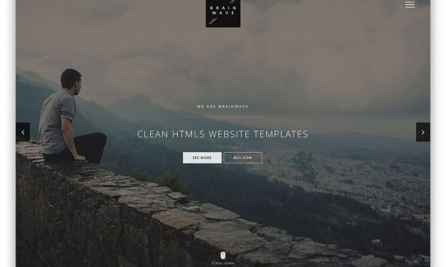 Top 29 Clean HTML5/CSS3 Website Templates With Minimalist Design Yet Powerful Core 2020