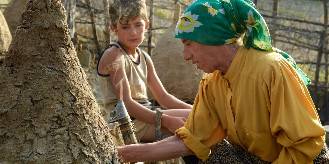 "The Complicated, Triumphant Woman at the Heart of the Film ""Honeyland"""