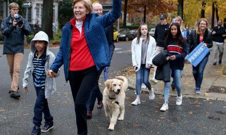 Best moments of Warren's campaign