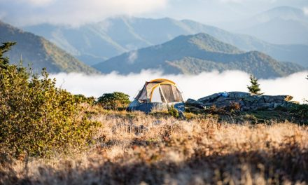 Ever Wanted to Go Camping in Colorado? Here Is a Helpful Guide for You