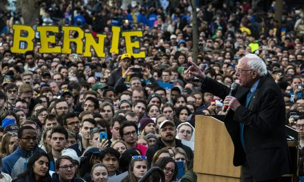 'No one went for a knockout blow': Inside Bernie's campaign nosedive