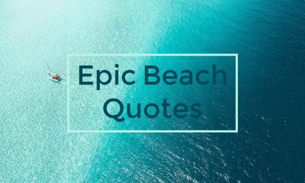 100 Beach Quotes & Ocean Captions For Those Who Love The Ocean