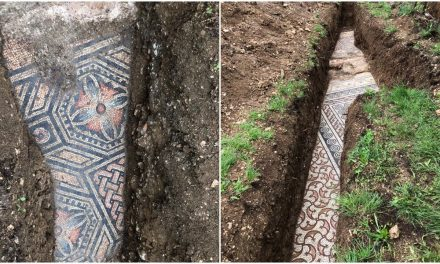 Magnificent Ancient Roman Mosaic Floor Unearthed in Verona, Italy