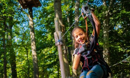Yes, They're Open: Where You Can Zipline In & Around NYC