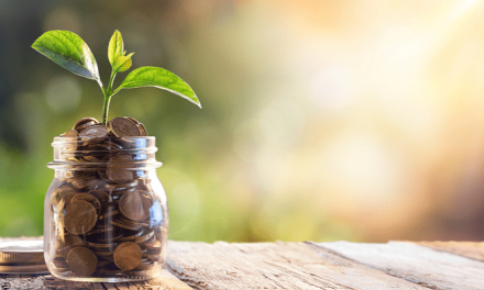 GirnarSoft to invest $20M in its subsidiary InsuranceDekho