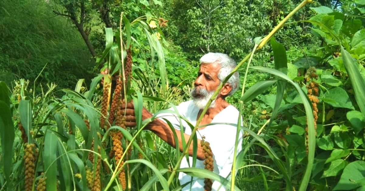 Meet the Man Teaching Farmers How to Grow 12 Crops a Year to Defy Droughts & Floods