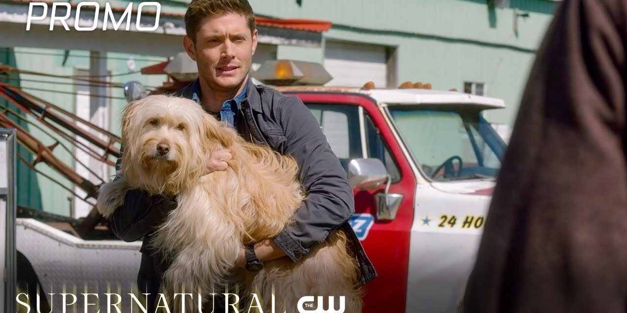 Supernatural | Season 15 Episode 19 | Inherit The Earth Promo | The CW