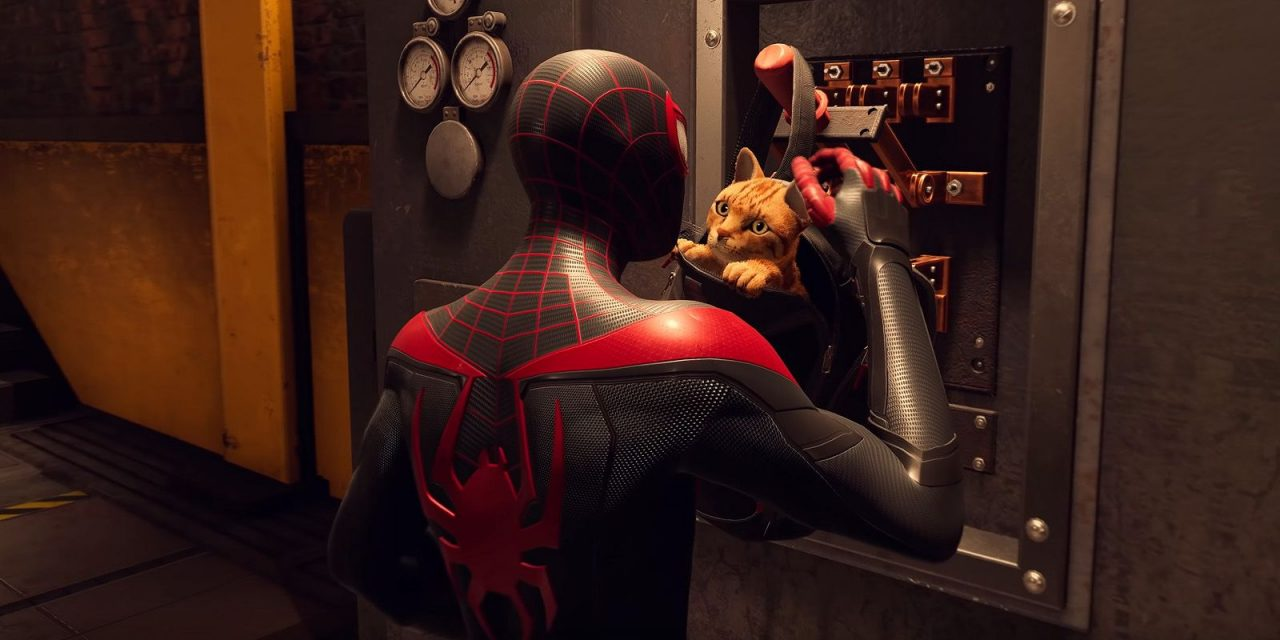 Spider-Man: Miles Morales & Spider-Cat Recreate Meme To Hype Launch