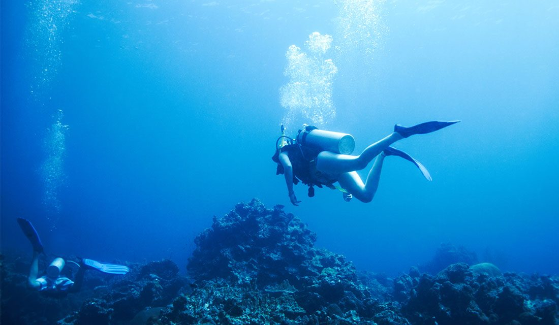 11 Very Best Diving and Water Activities WordPress Themes to Make Your Website More Attractive 2020