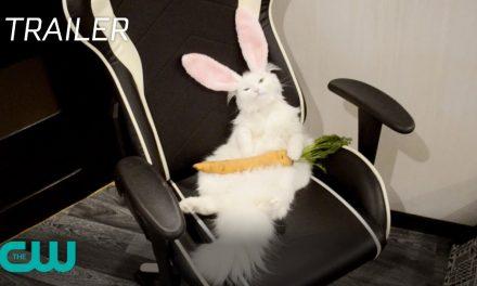 World's Funniest Animals: Spring Fling | Season Trailer | The CW