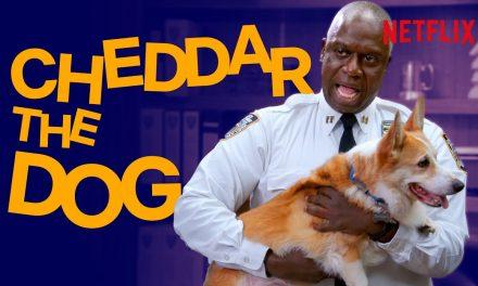 The Very Best of Cheddar the Dog! | Brooklyn Nine-Nine