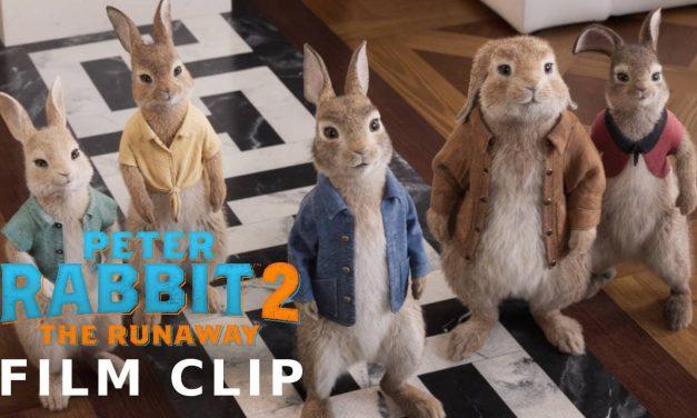PETER RABBIT 2: THE RUNAWAY Clip – Ringleader