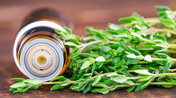Why It's Time to Discover the Benefits of Thyme…