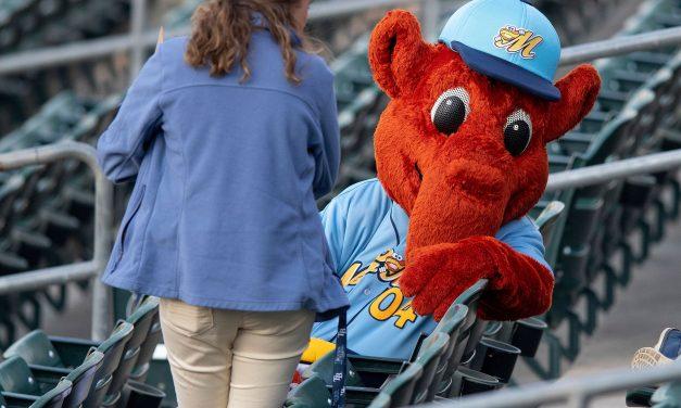 Minor league baseball's best nicknames and mascots