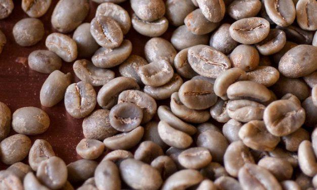 Top tips for omni roasting coffee