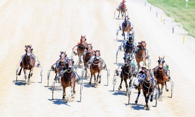 Harness racing selections: Tuesday, August 3