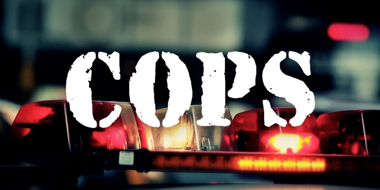 Cops Reboot Coming To New Fox Nation Streaming Service